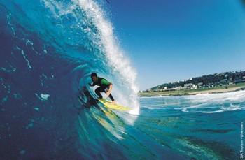 Surfing01302858b_2