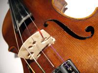 Violin_2
