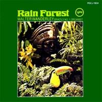 Rain_forest_2